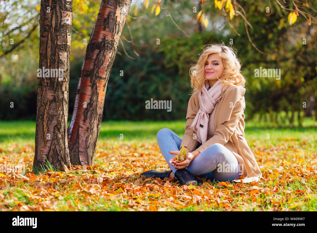 Young beautiful woman sitting under the tree on the ground coverd with fallen yellow autumn leaves - Stock Image