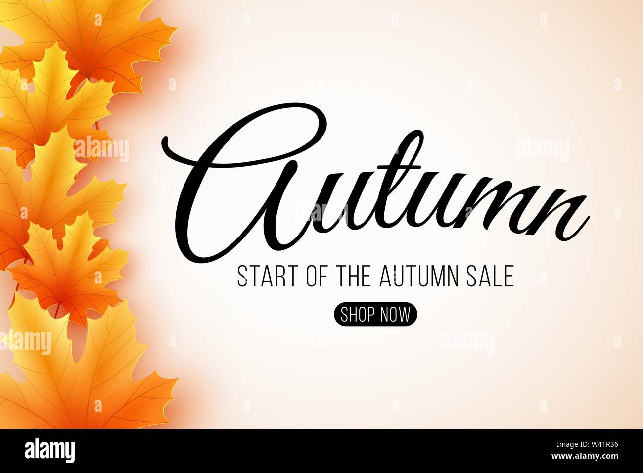 Autumn sale. Web banner with lettering. Seasonal poster with autumn leaves. Maple leaf. Start of the autumn sale. Vector illustration. EPS 10 - Stock Image