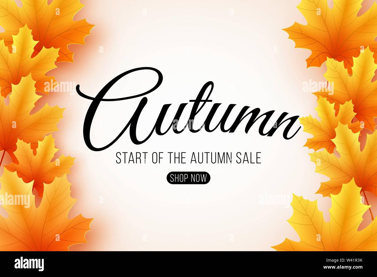 Autumn sale. Web banner with lettering. Seasonal poster with autumn leaves. Maple leaf. Start of a seasonal sale. Vector illustration. EPS 10 - Stock Image