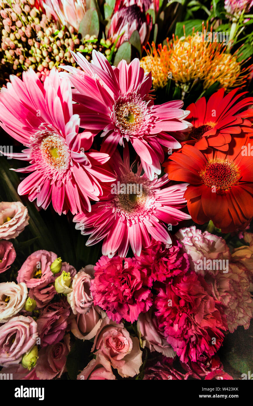 Romantic bouquet of flowers with different colors and various types of flowers like rose and lily - Stock Image
