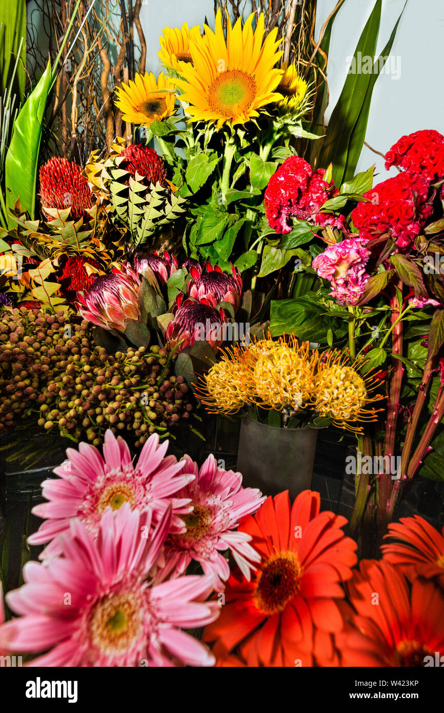 Exotic flower bouquet and bunch in a modern gift shop with various and colorful floral items - Stock Image