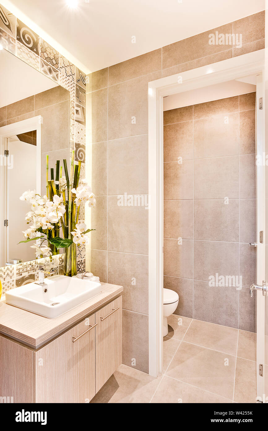 Washroom Interior Lighting And White Flower Decoration With Toilet Door Entrance There Are Green Leaves With Bamboo Sticks Near Tothe Mirror On The Stock Photo Alamy