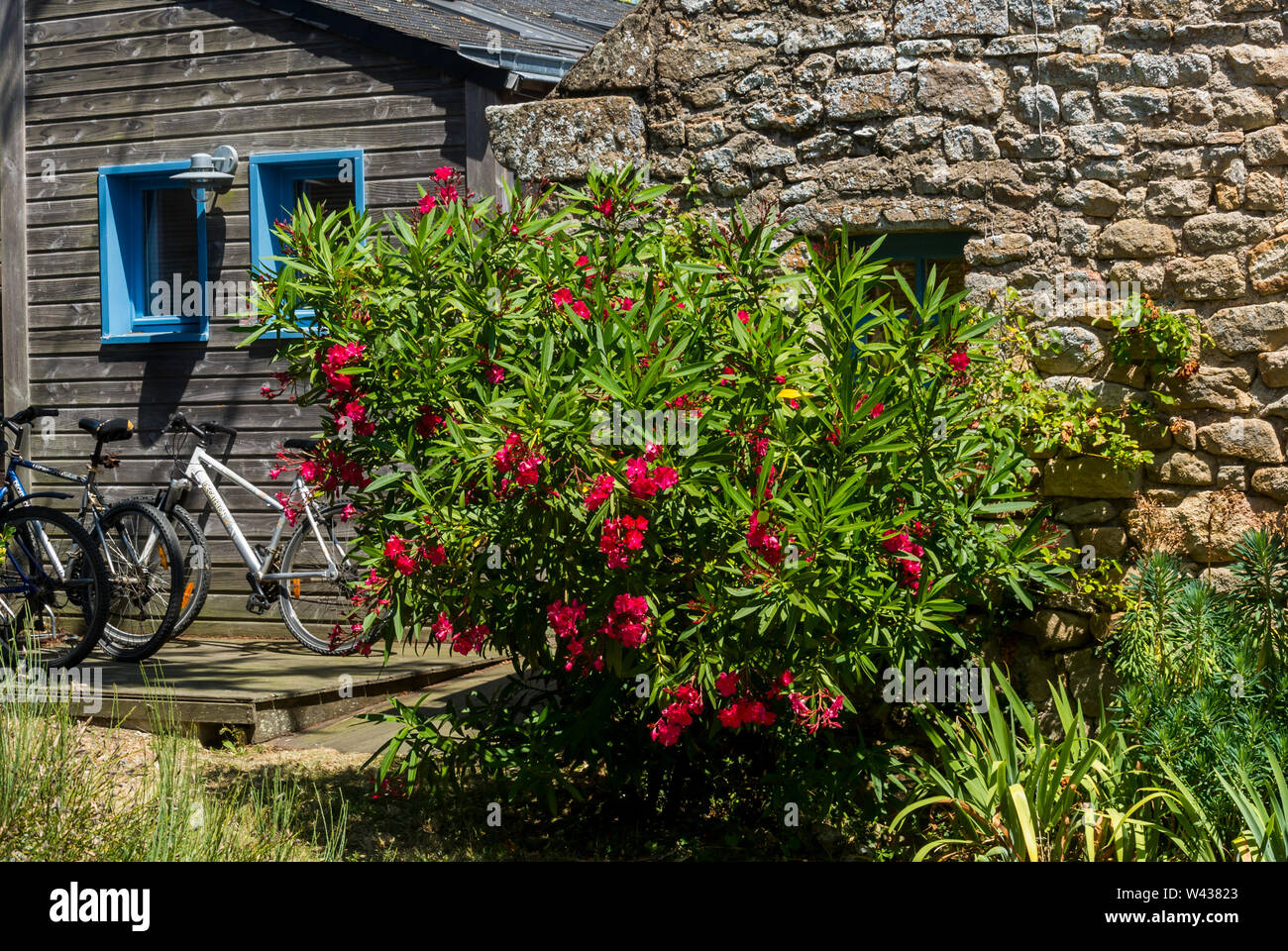 Vannes, FRANCE, Detail, Traditional Housing in Old Town, Ile d'Arz, in Golfe de Morbihan,  SUmmer Vacation - Stock Image