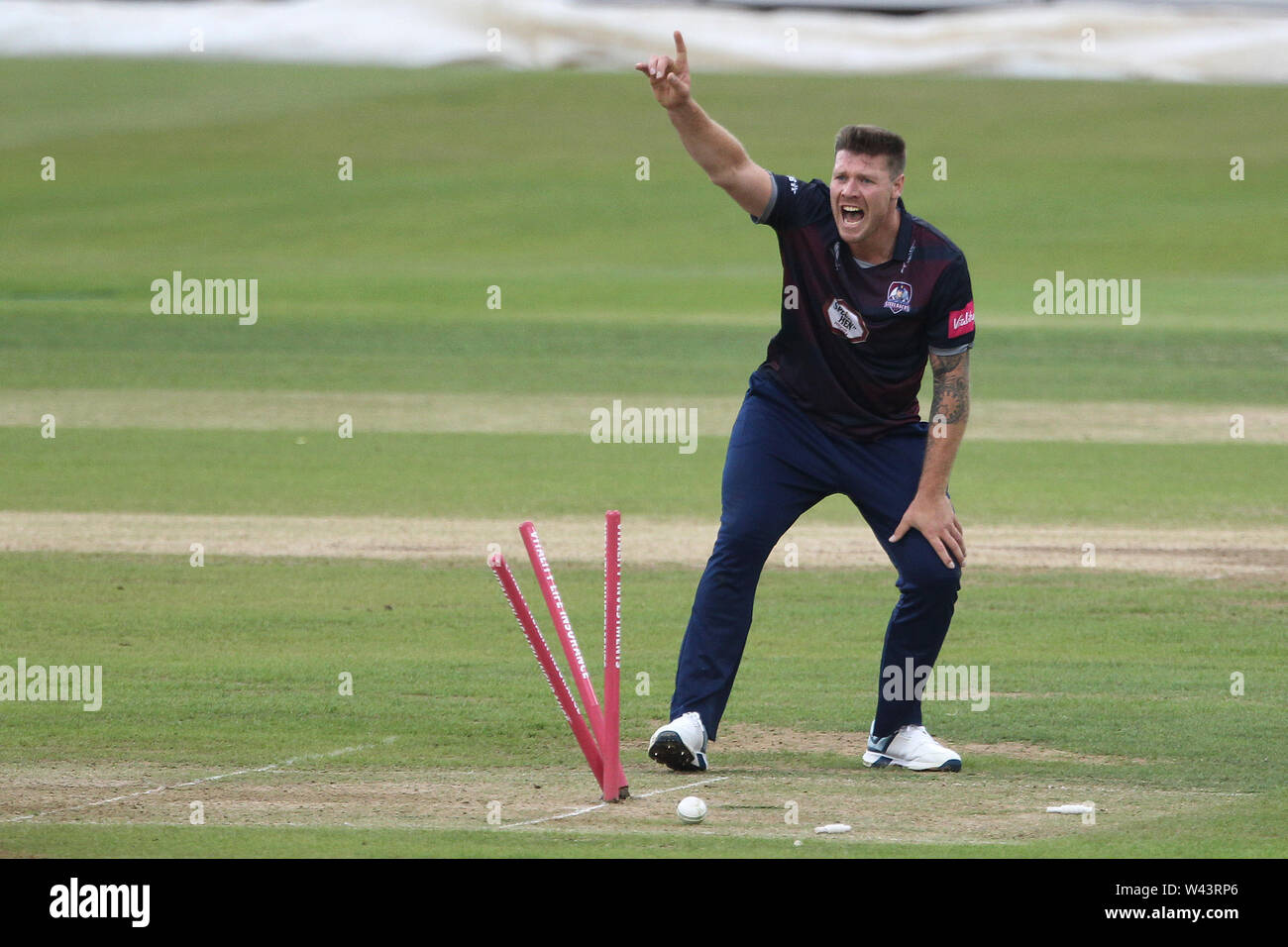 CHESTER LE STREET, ENGLAND 19th July 2019. 2019. Matt Coles of Northants appeals for a run out during the Vitality T20 Blast match between Durham County Cricket Club and Northamptonshire County Cricket Club at Emirates Riverside, Chester le Street on Friday 19th July 2019. (Credit: Mark Fletcher   MI News ) Credit: MI News & Sport /Alamy Live News - Stock Image