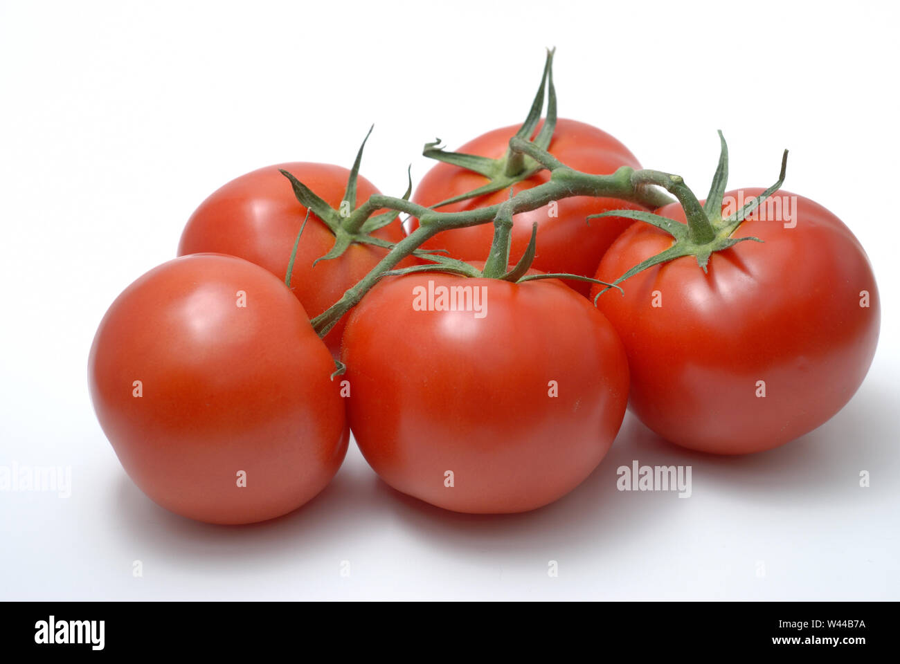 Five fresh whole tomatoes still on the vine Stock Photo
