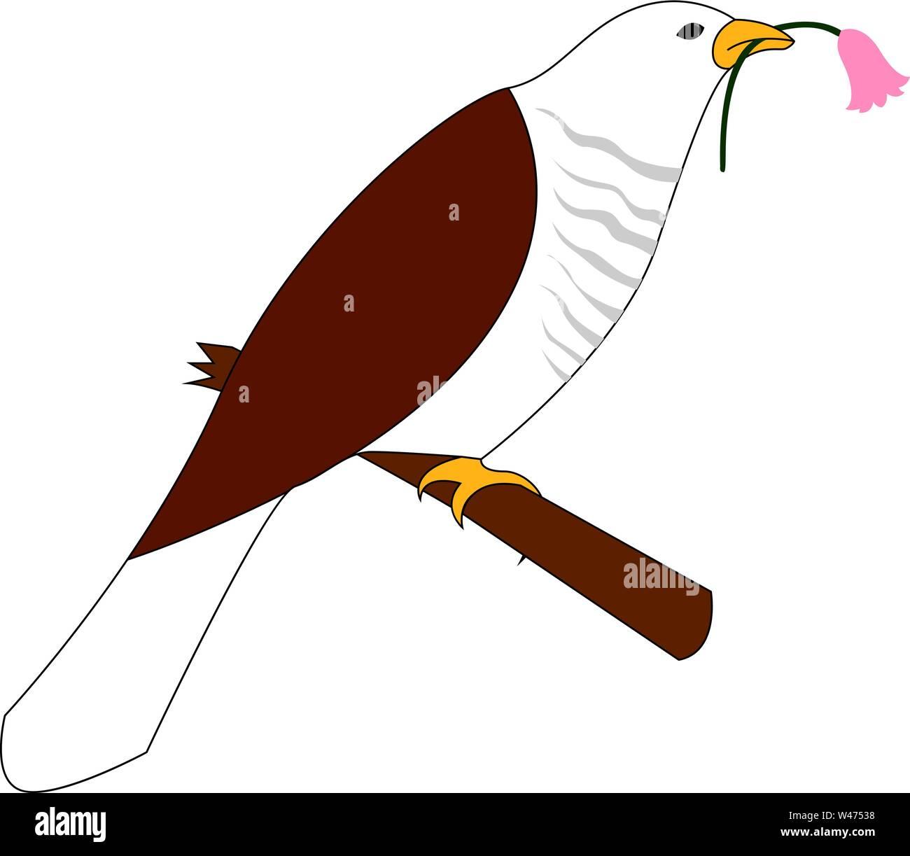 Cuckoo bird, illustration, vector on white background. - Stock Image