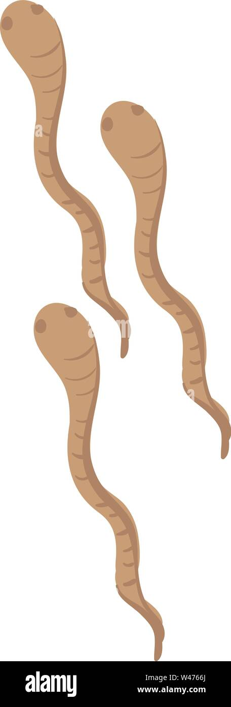 Worms Vector Vectors Stock Photos Worms Vector Vectors