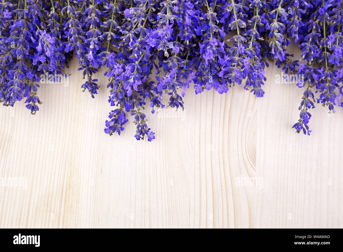 Flowers Background Frame Pattern Of Lavender Flowers On Wooden