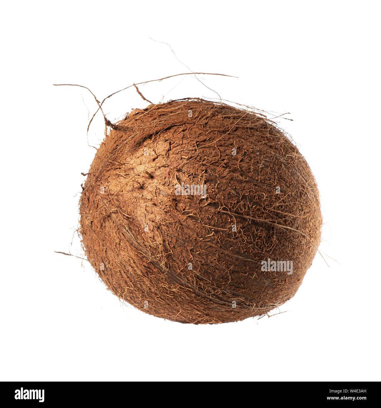 Exotic and hairy coconut isolated on white background Stock Photo