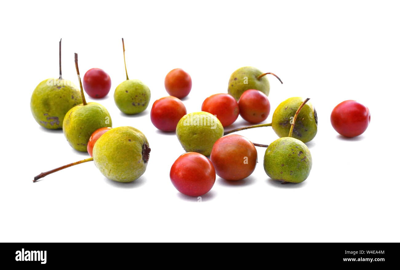 Mixed fruit Pears and wild plums on white background.. Stock Photo