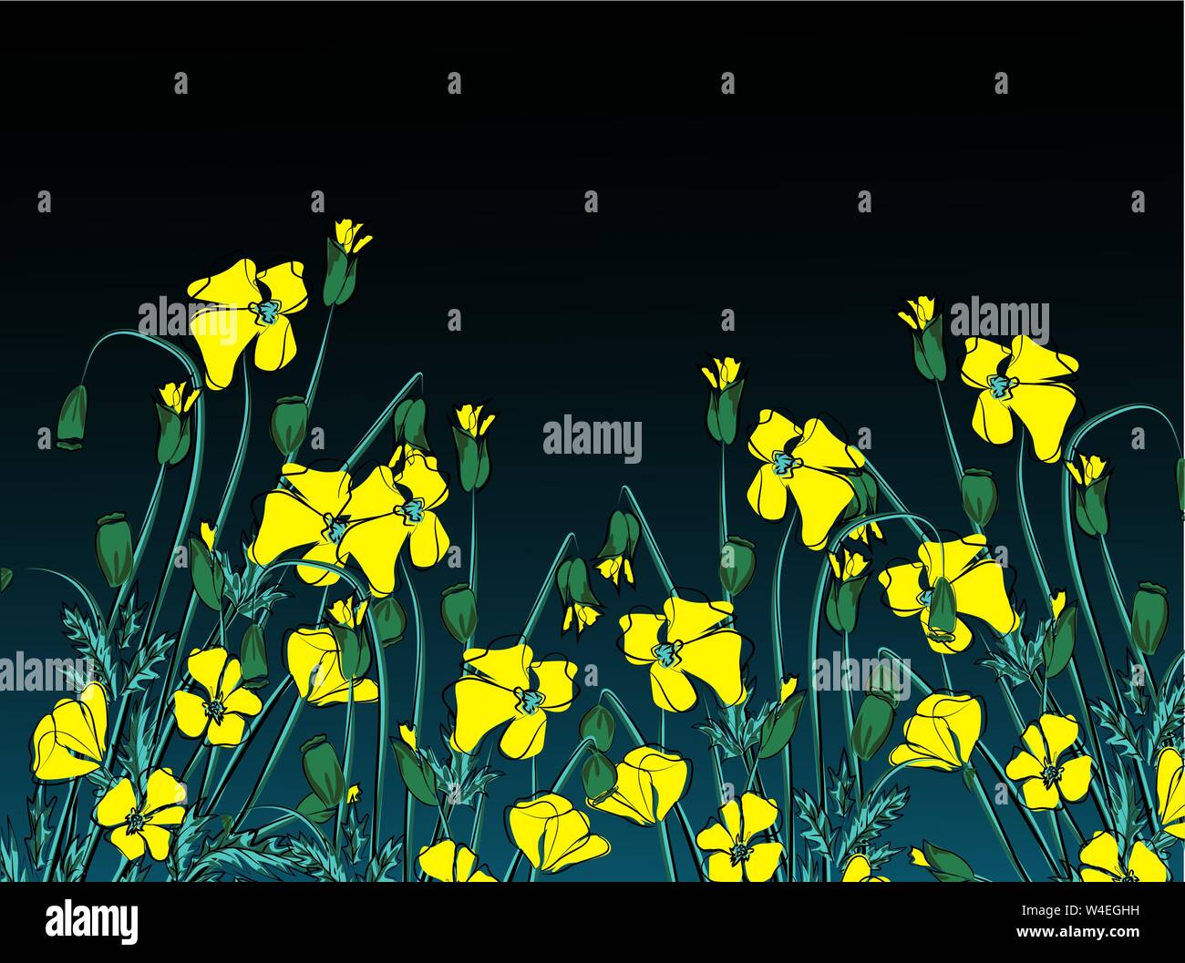 vector illustration of California state yellow poppies Stock Vector