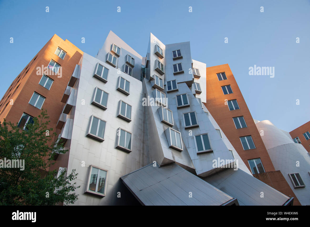 Stata Building by Frank Gehry in MIT Stock Photo