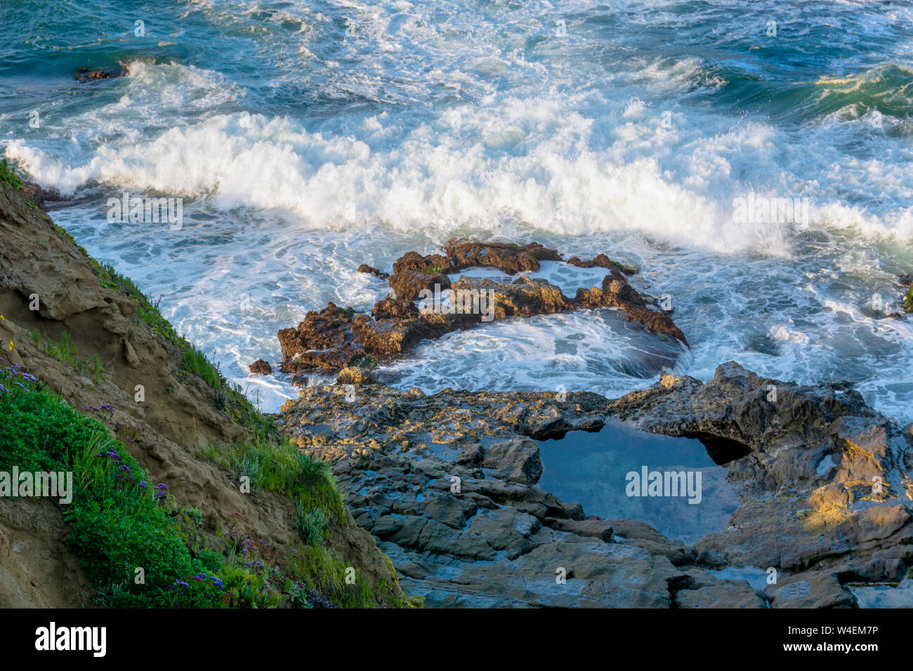 Early morning, high angle closeup view of a tide pool, ocean waves crashing against rocks and a cliff in Laguna Beach, California. Stock Photo