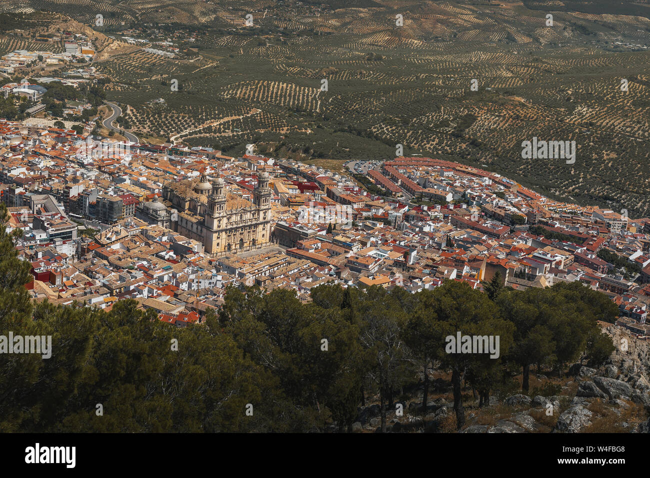 Aerial view of Jaen city with Cathedral and olive trees - Jaen, Andalusia, Spain Stock Photo