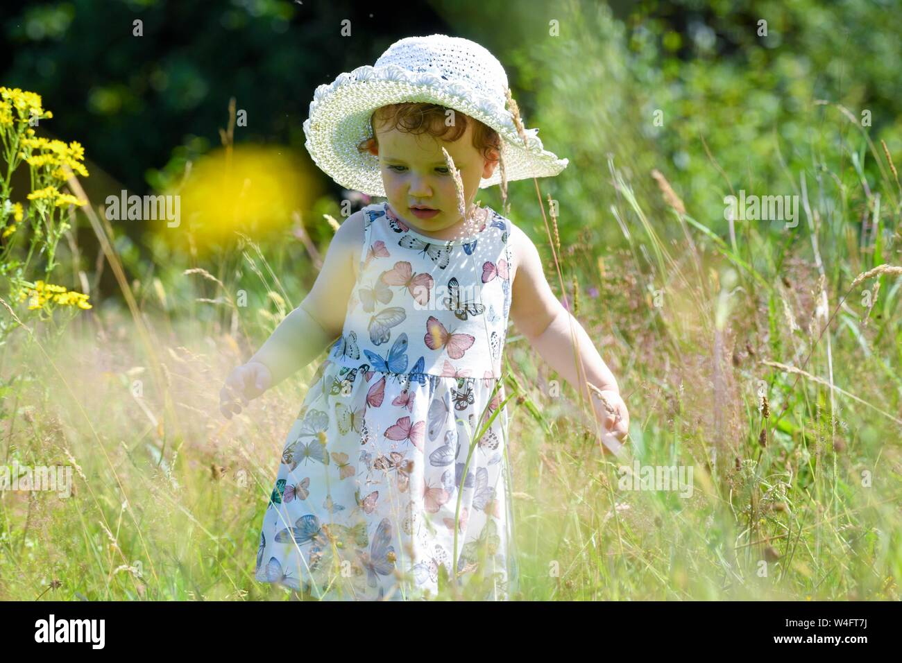 Gower, Wales UK. 23rd July 2019. UK Weather: Pictured is toddler Lillian Joy, enjoying the scorching sunshine in a summer dress and hat, on the Gower Peninsular in South Wales, as temperatures soar across the UK at the start on the Summer school holidays, on the hottest day of the year to date. Credit : Robert Melen/Alamy Live News Stock Photo