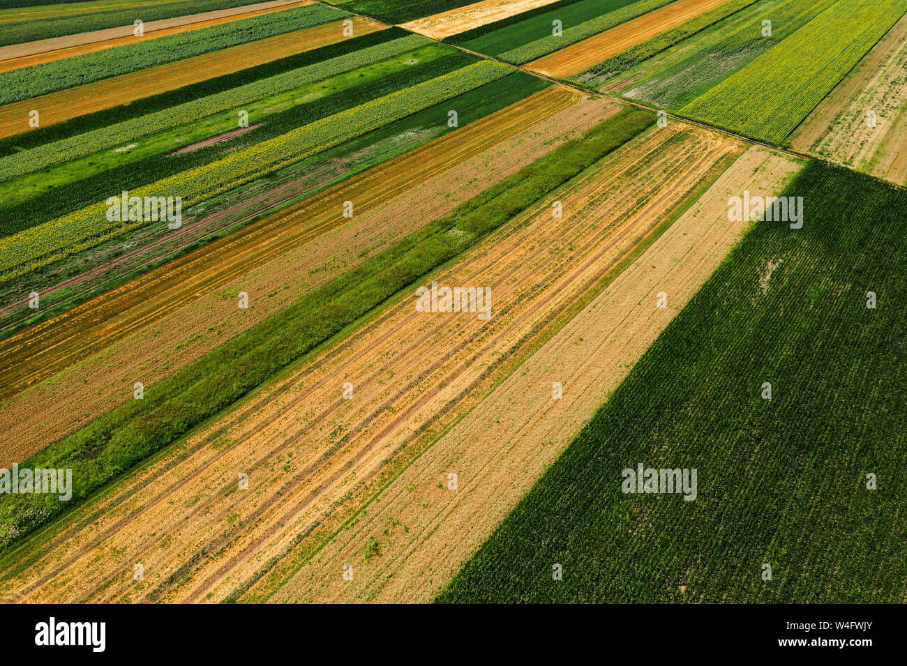 Aerial view of cultivated agricultural fields in summer, beautiful countryside patchwork landscape from drone pov Stock Photo