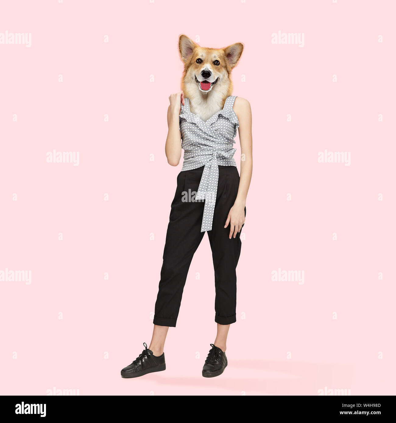 Dog With The Slim Female Body In Casual Clothes Feminine