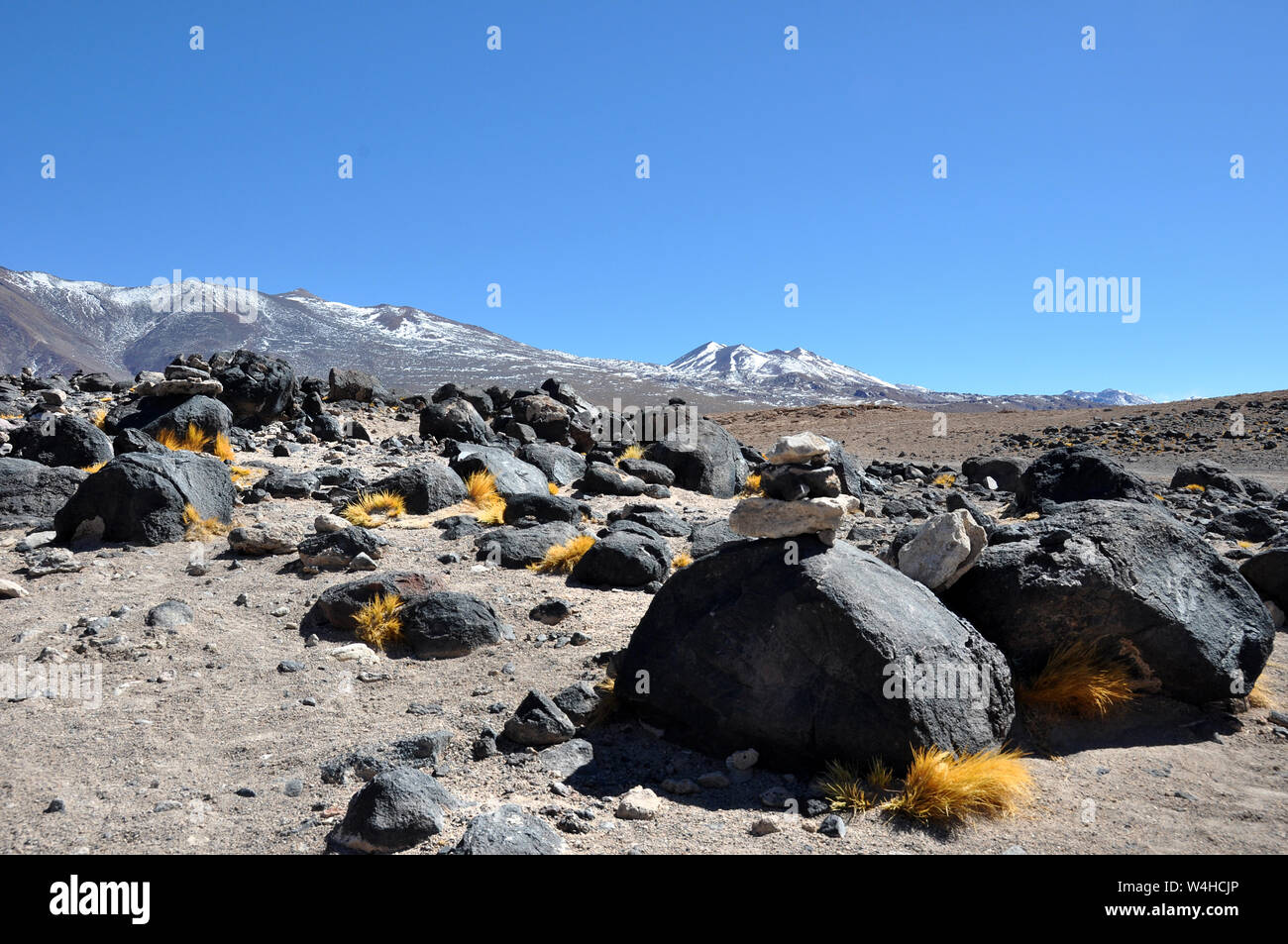 Bolivian Lagunas In The Andes Mountains Region Over 4000 Meters Above Sealevel Stock Photo 260997262 Alamy