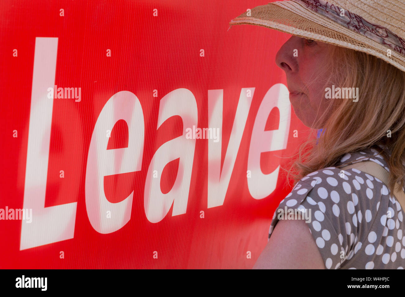 On the day that the Conservative Party elects its leader and the country's Prime Minister, Boris Johnson, Brexiteers show their support on College Green after the result, on 23rd July 2019, in Westminster, London, England. Stock Photo