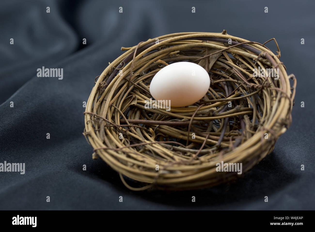 Elegant sophistication of black background enhances small nest egg as wise symbol of ordinary investment beginnings. Stock Photo