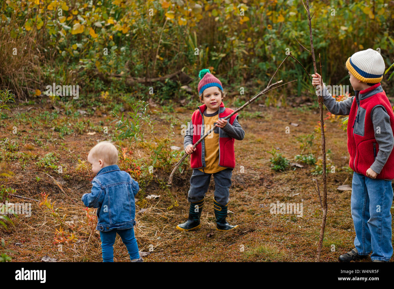 three small boys play together in a prairie in autumn Stock Photo