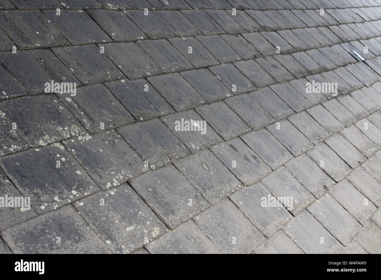 Slates laid on a roof, showing the regurlar repeat pattern, with each row offset to the lower one with a slipped tile fixed with a lead stripe to rear Stock Photo