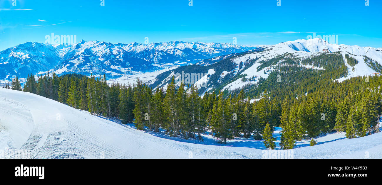 Panorama of the lush spuce forest on the snowy slope of Schmittenhohe mount with a view on sharp peak of Kitzsteinhorn mount of Kaprun resort, Zell am Stock Photo