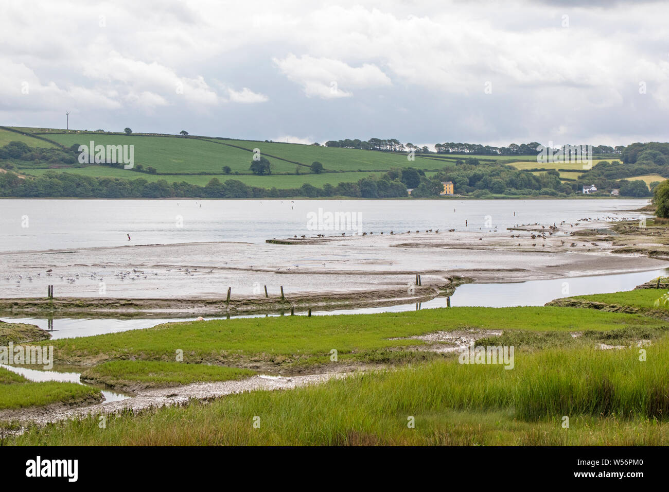 The looking across the Teifi estuary between Cardigan and Poppit Sands, Ceredigion, Wales, UK Stock Photo