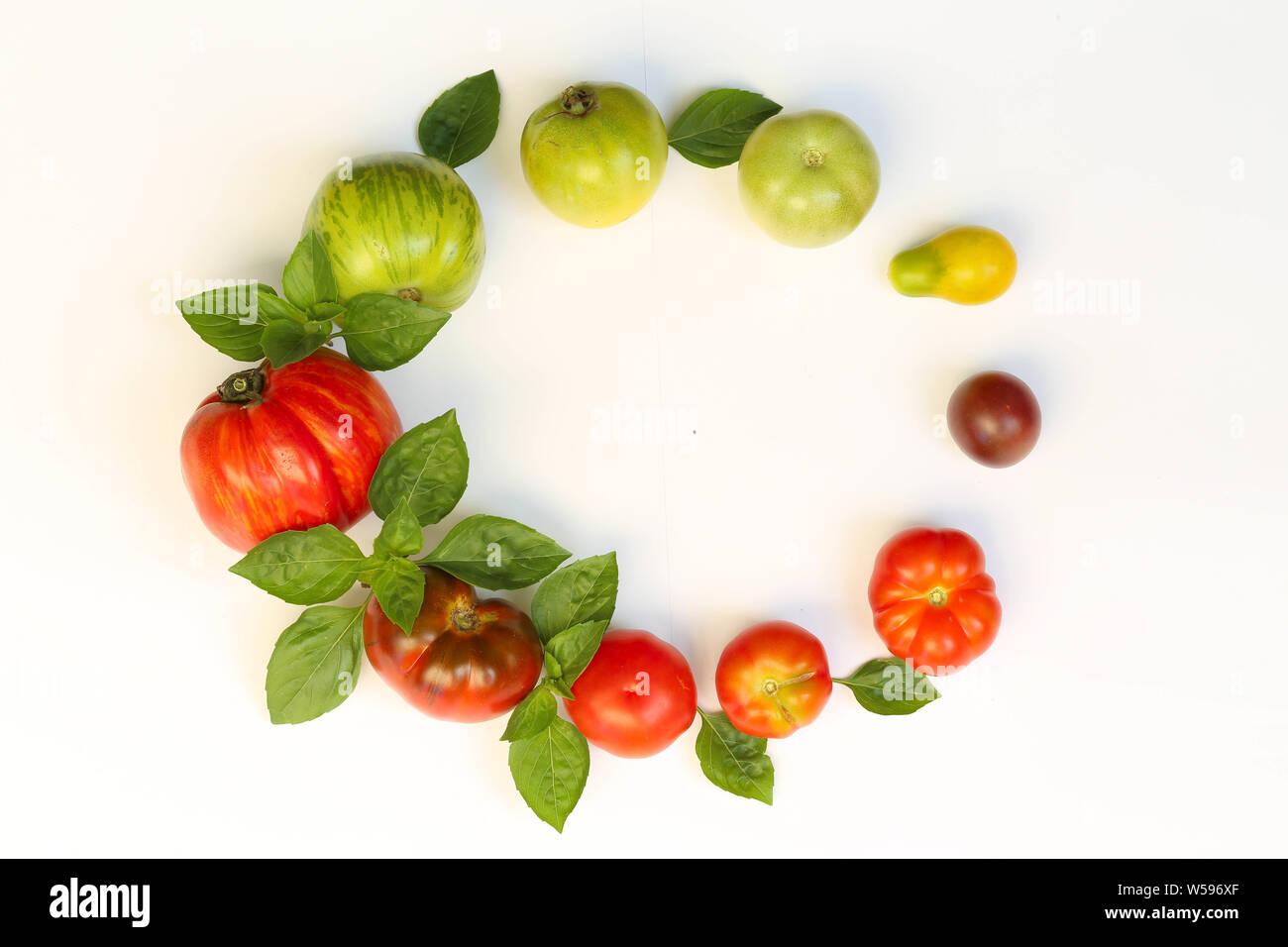 Tomaten mit Basilikum auf weißem Hintergrund Stock Photo