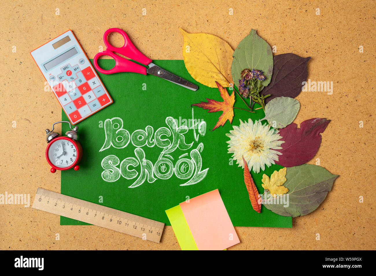 Back to school concept. Alarm clock with autumn dry leaves. Stock Photo