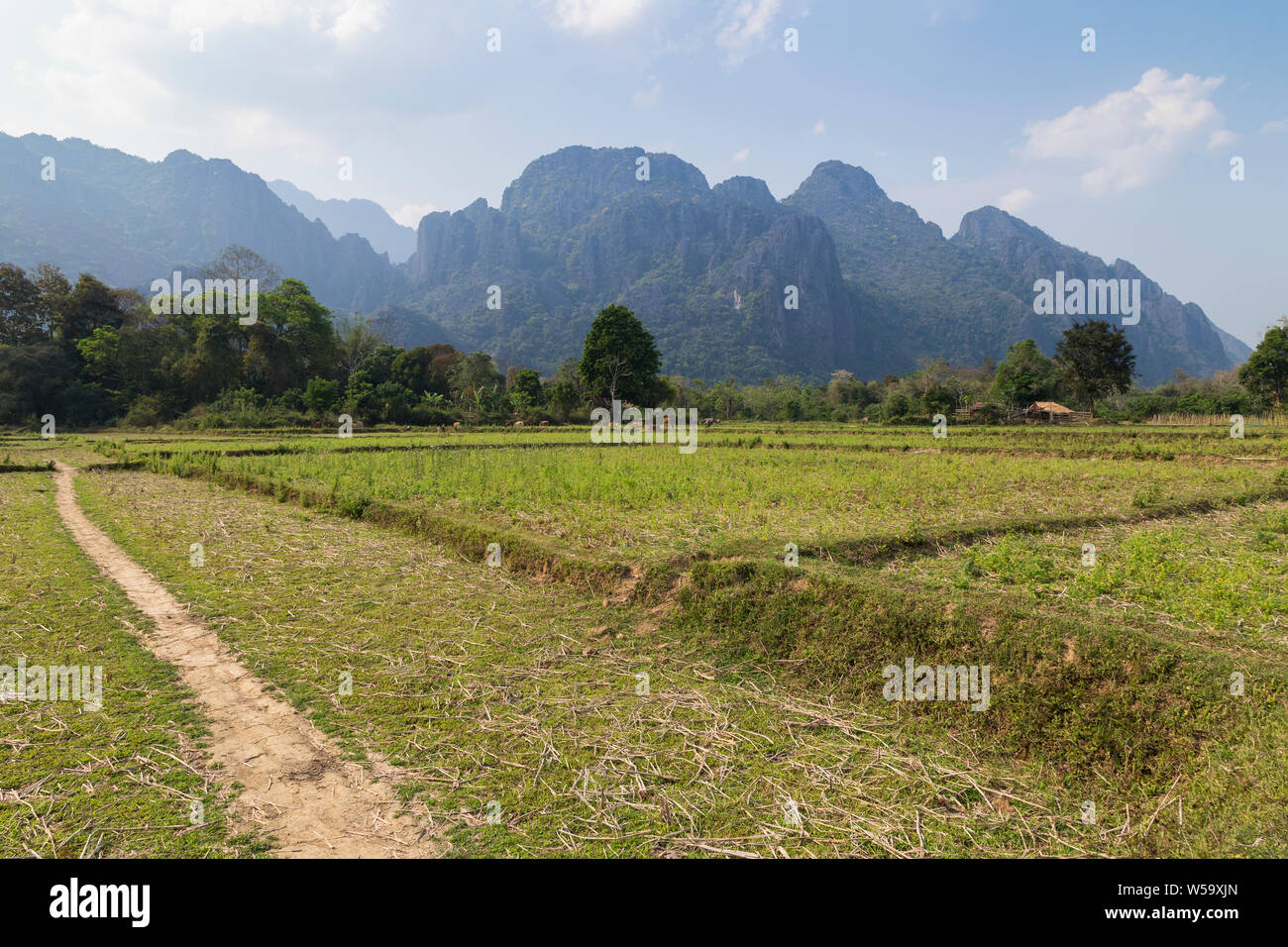 Beautiful view of farmland and karst limestone mountains near Vang Vieng, Vientiane Province, Laos, on a sunny day. Stock Photo