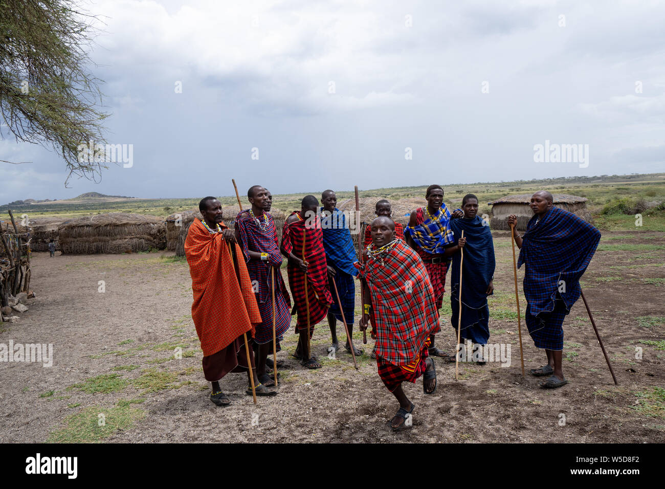 Traditional Masai Jumping Dance at a Masai Village, Tanzania, East Africa Stock Photo