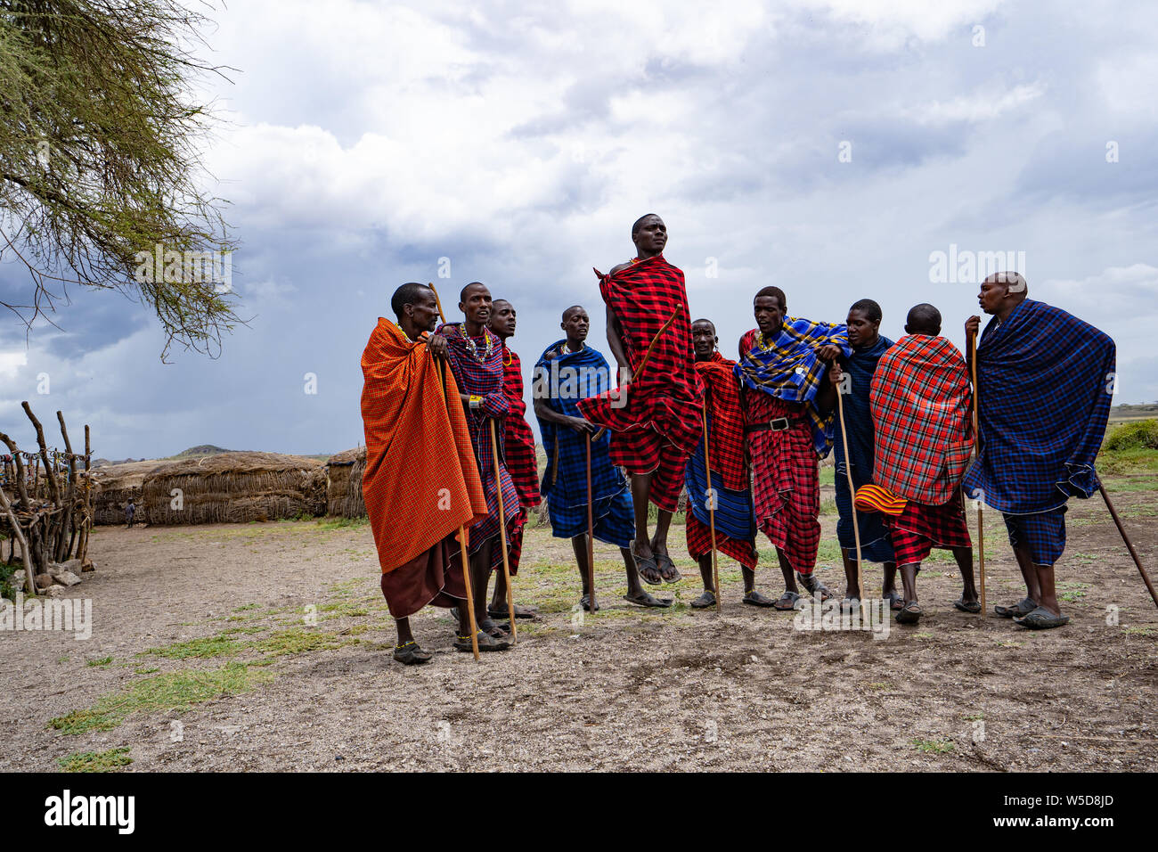 Traditional Masai Jumping Dance at a Masai Village, Tanzania, East Africa Stock Photo