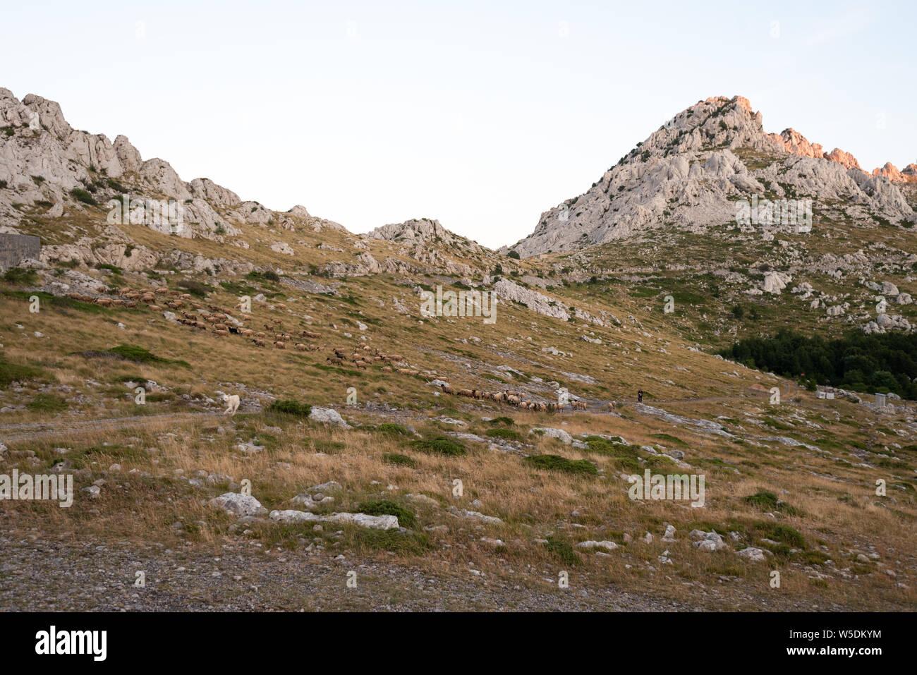 Tulove Grede, Velebit Mountain, Croatia Stock Photo