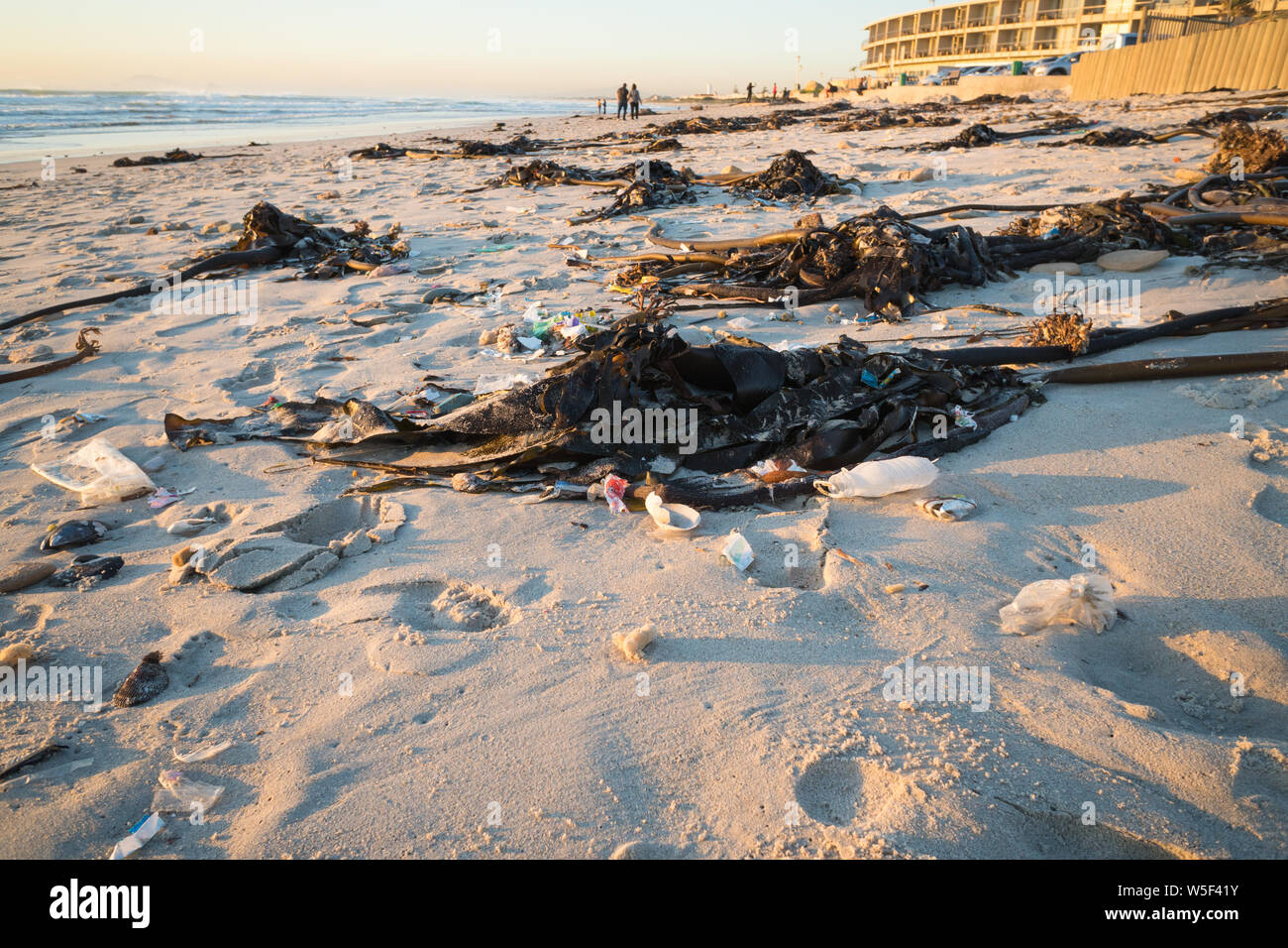 debris and plastic pollution washed up onto the white beach sand entangled in seaweed or kelp concept environmental coastal destruction in Africa Stock Photo