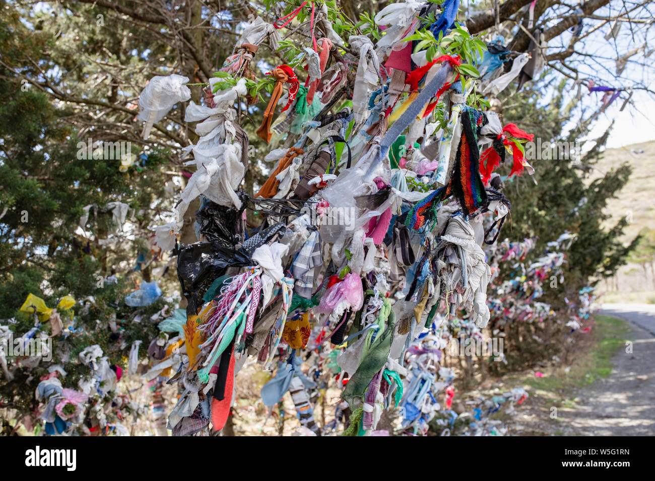 Making a mess. Wedding tradition in Georgia, Decoration - colorful ribbons, even garbage on bush and trees, on the young couple's way. Stock Photo
