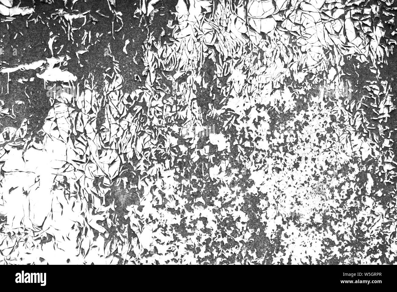 Old Cracked Paint Contrast Black And White Texture