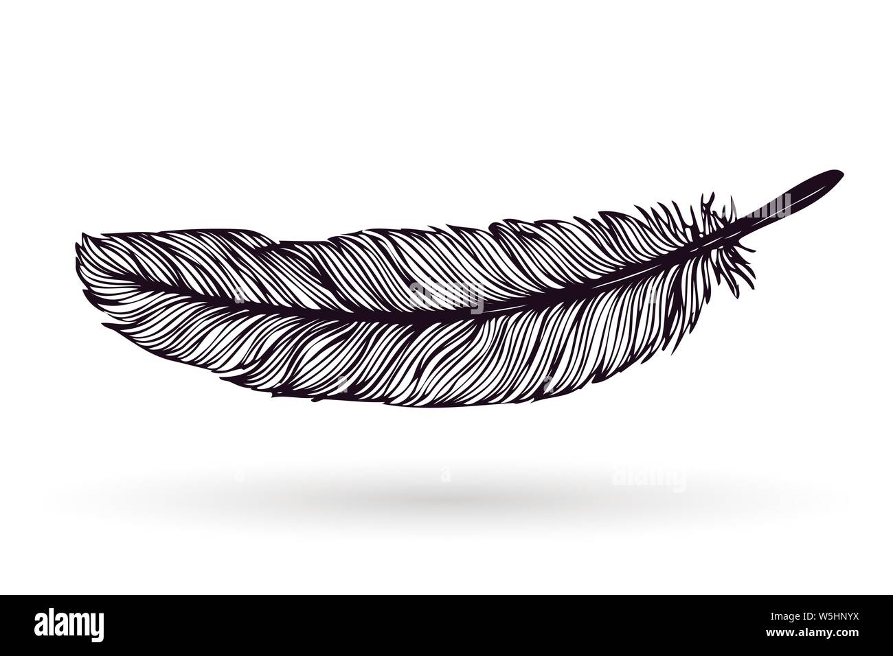Hand drawn feather isolated on white background. Artistic ink vector illustrations. Vintage tribal feather. Outline vector drawing. Stock Vector