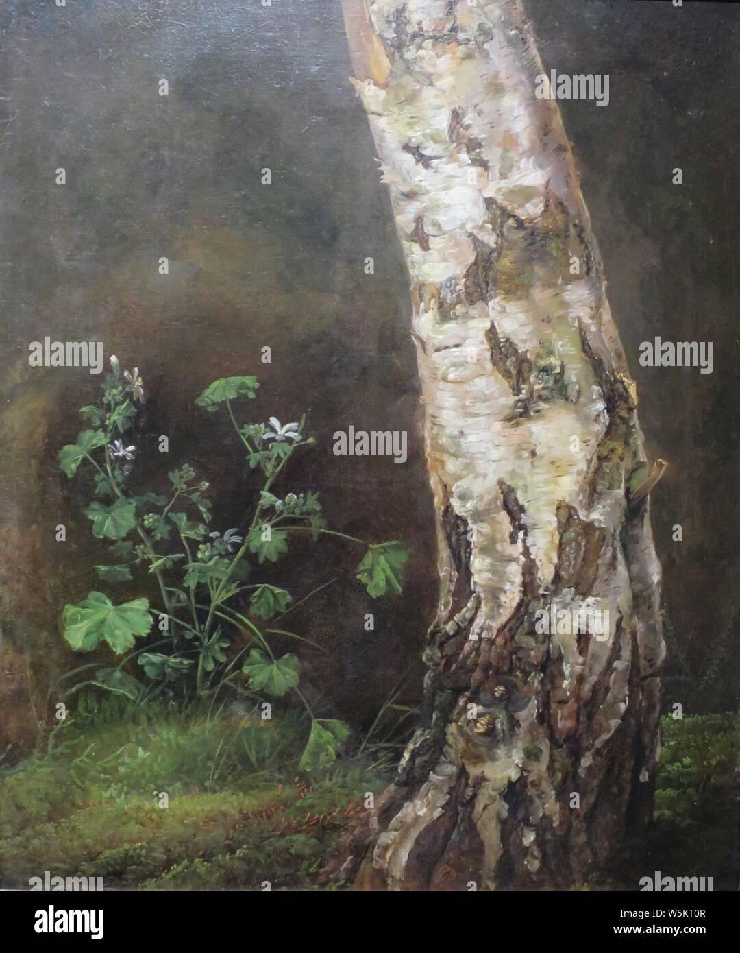 'Study of a Birch Tree' by Johan Christian Dahl, Stock Photo