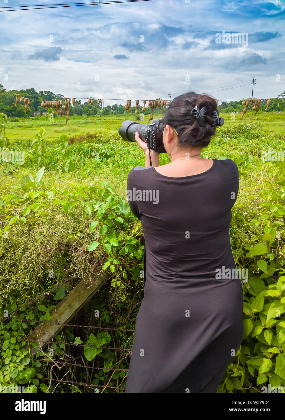 Young Lady Wildlife Photographer taking photos with Zoom Lens. Stock Photo