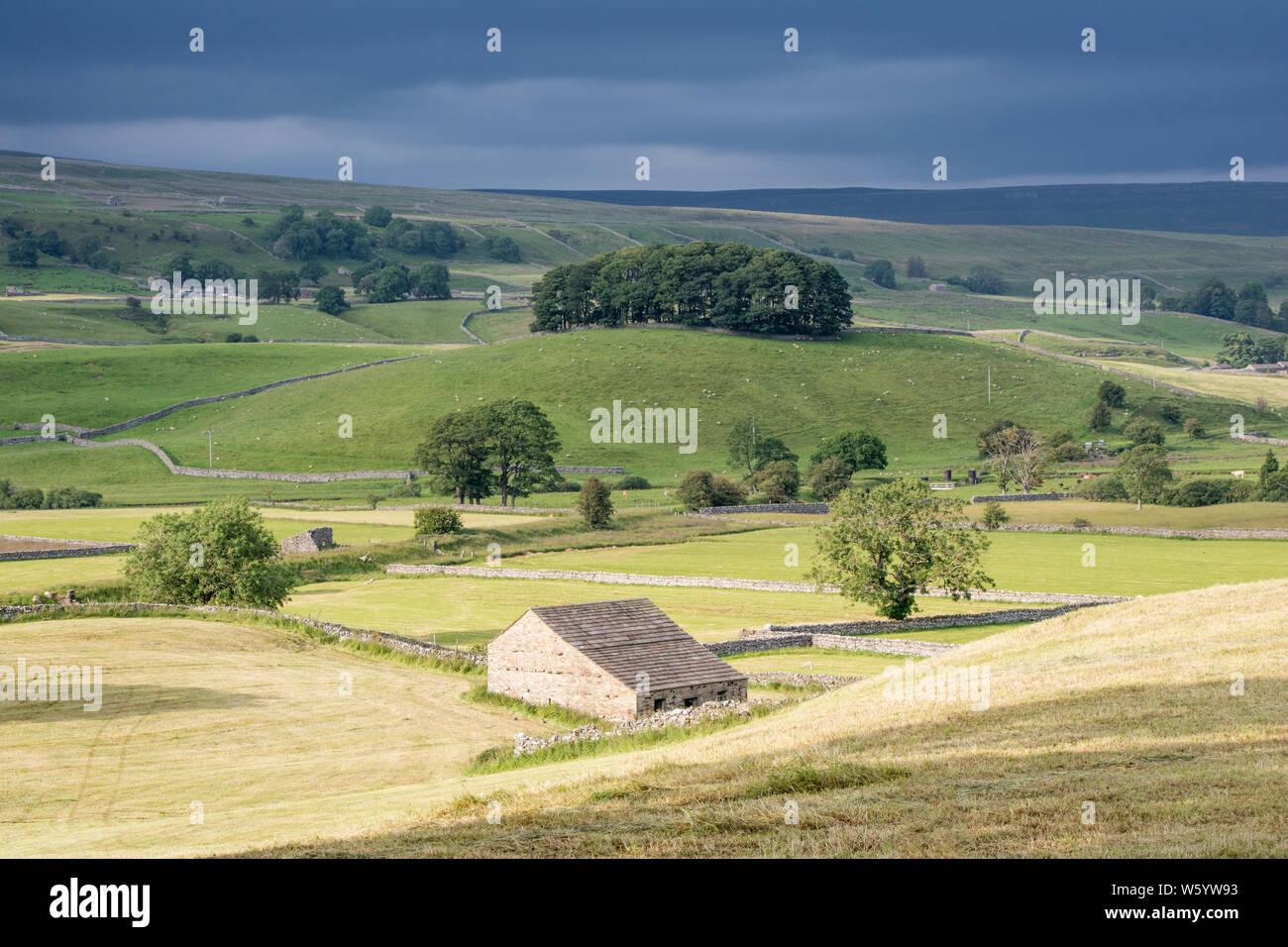 Wensleydale landscape, Yorkshire Dales National Park, North Yorkshire, England, UK Stock Photo
