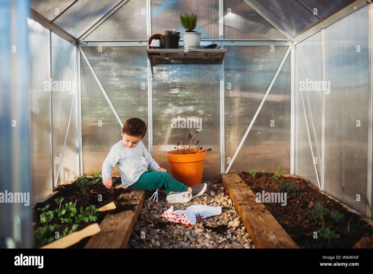 Young boy sitting inside back yard green house Stock Photo