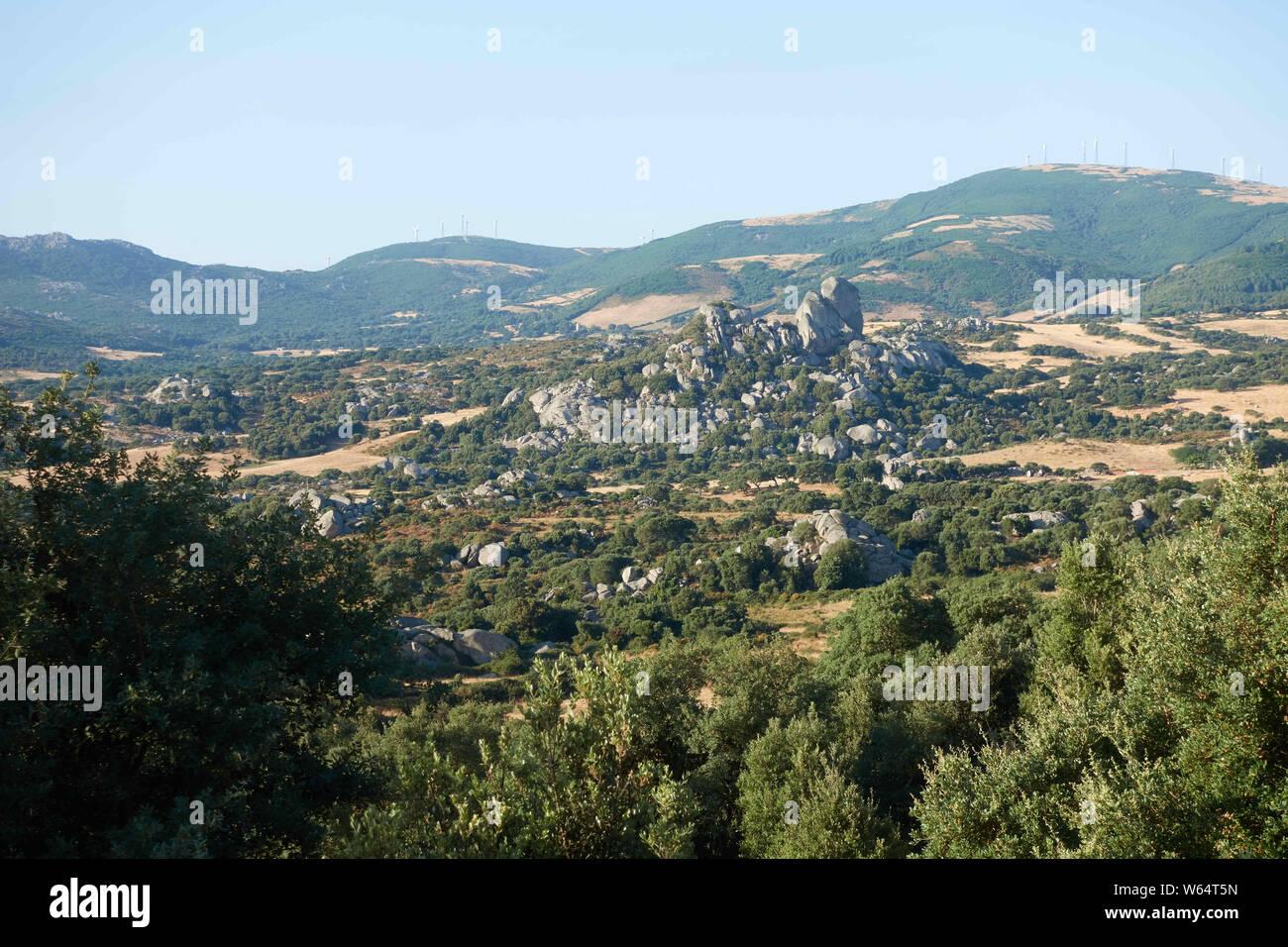 Valle della Luna, valley of the moon, granite landscape at Aggius, Olbia-Tempio, Gallura, Sardinia, Italy, Mediterranean sea, Europe Stock Photo
