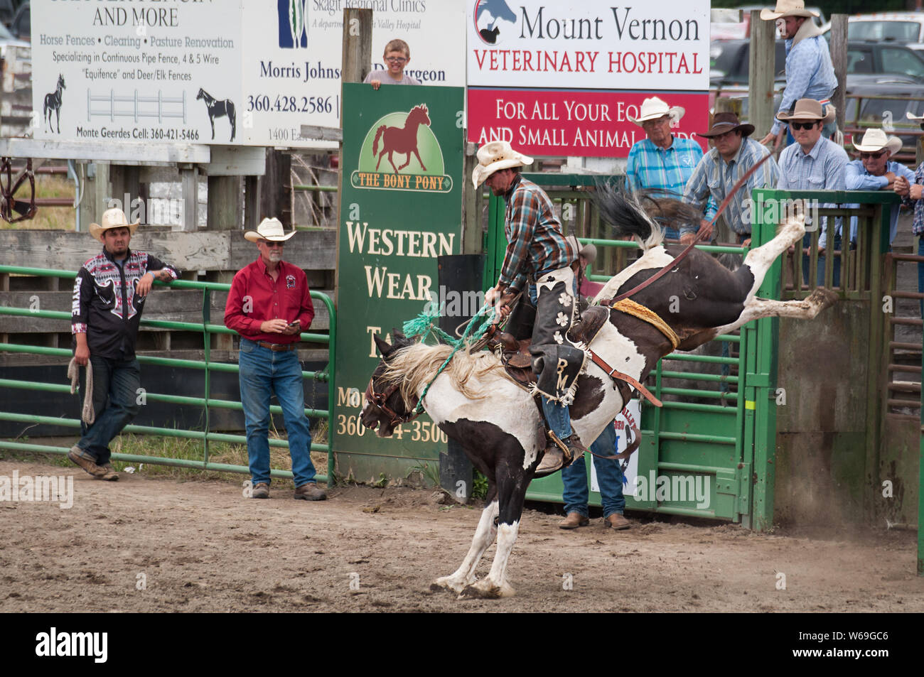 This Cowboy Riding A Bucking Horse At The Annual 4th Of July Loggerodeo In Sedro Woolley Wa One Of The Longest Running Rodeos In The State Stock Photo Alamy
