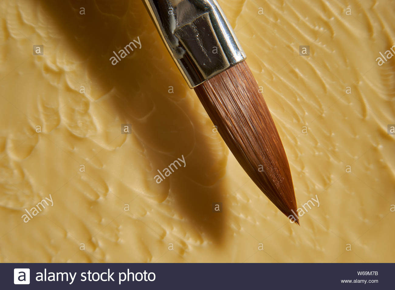 A macro image of the tip of an artist's paintbrush - the bristles