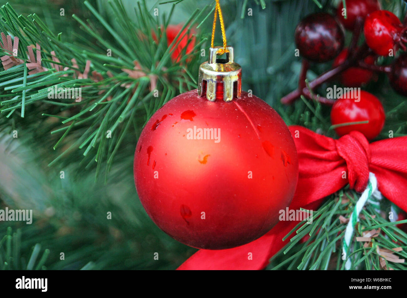 Christmas Balls Yellow Red White Blue Gold Blue Hang On A Christmas Tree Branch On A Sunny Sunny Winter Day Stock Photo Alamy