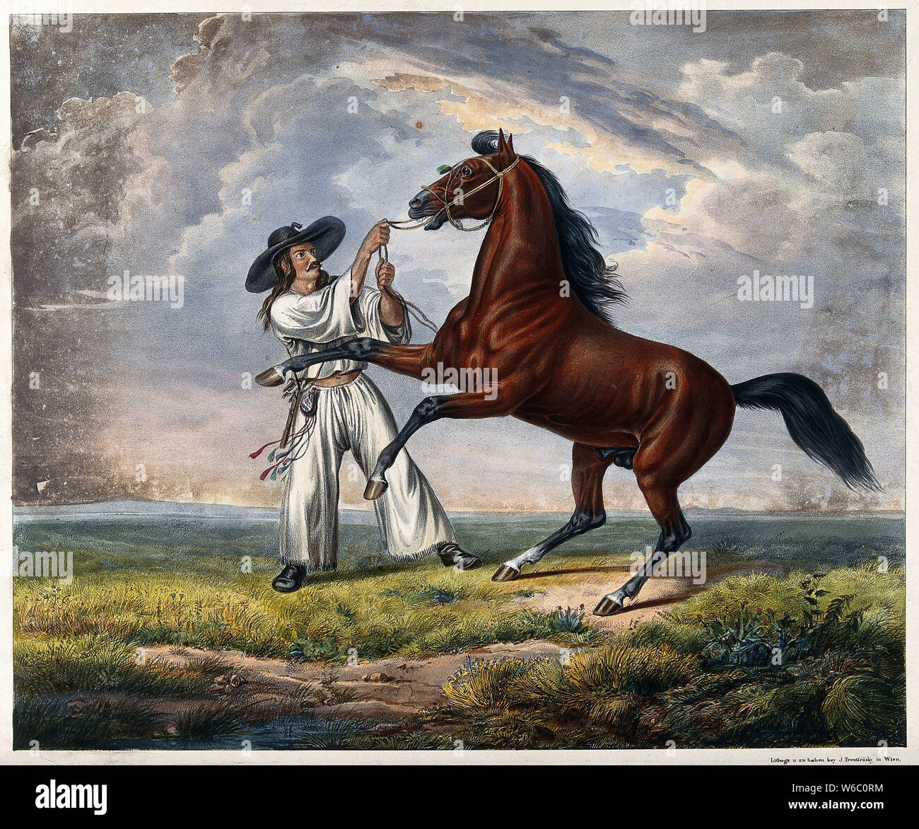 A man in white dress with a large brimmed black hat is holding a rearing horse by its reins. Coloured lithograph. Stock Photo