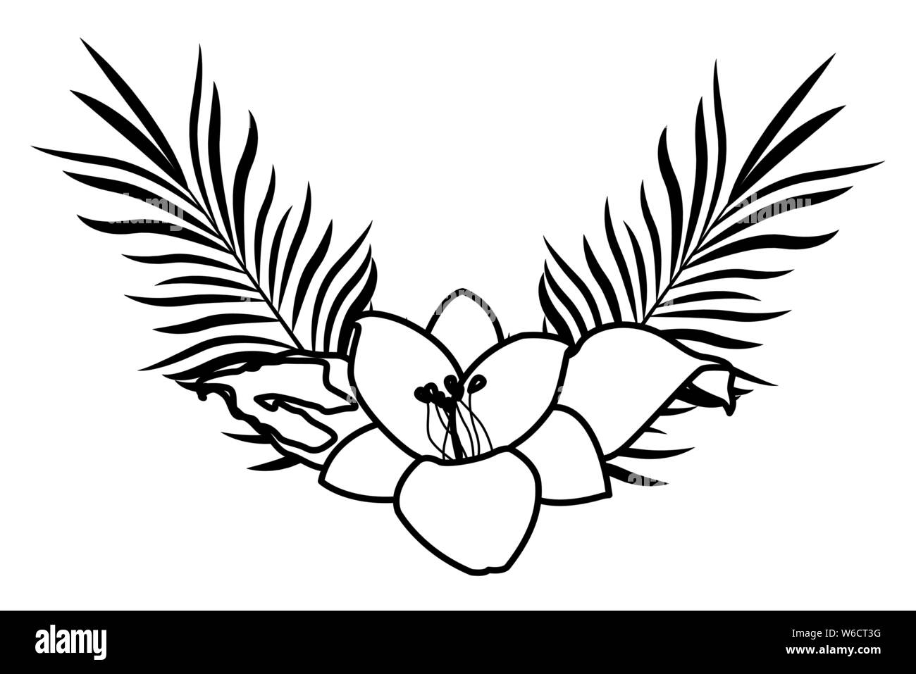 Tropical Flower And Palm Leaves In Black And White Stock Vector Image Art Alamy Here's a collection of beautiful flower clipart including graphics of tropical blossoms, roses, wildflowers, lilies and many other floral images. https www alamy com tropical flower and palm leaves in black and white image262125796 html
