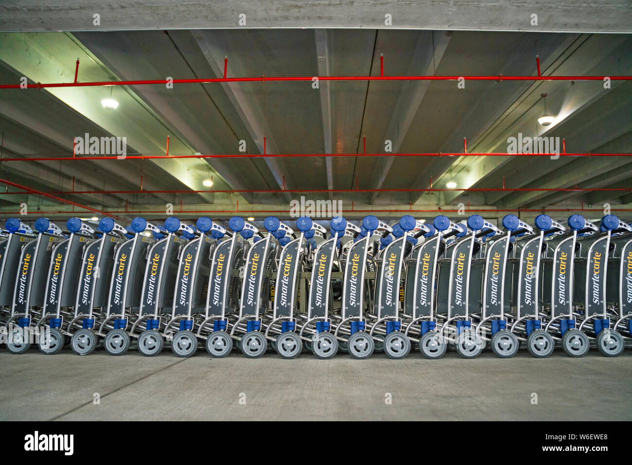 Airport Trolleys Miami Airport Stock Photo