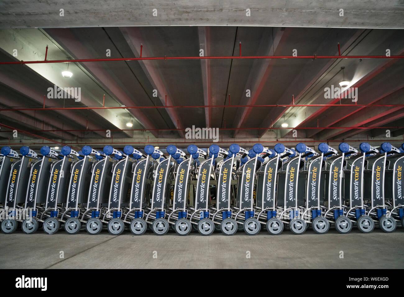 Luggage Trolleys Miami Airport Stock Photo